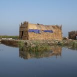 A traditional Marsh Arab home, built in the same style used by the ancient Sumerians. It floats atop the Mesopotamian Marshes. Photo by Erica Gies.